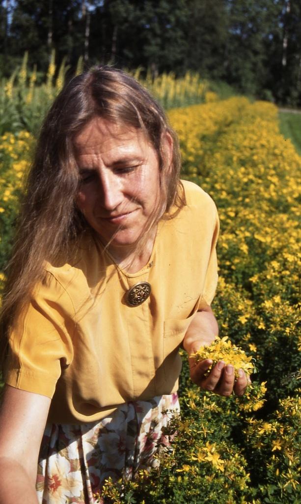 virpikeraa2 Mida ja kuidas kevadel süüa?