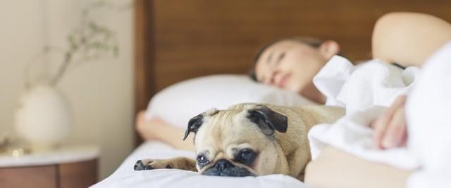 unine Miks tunnen end hommikuti ärgates väsinuna?