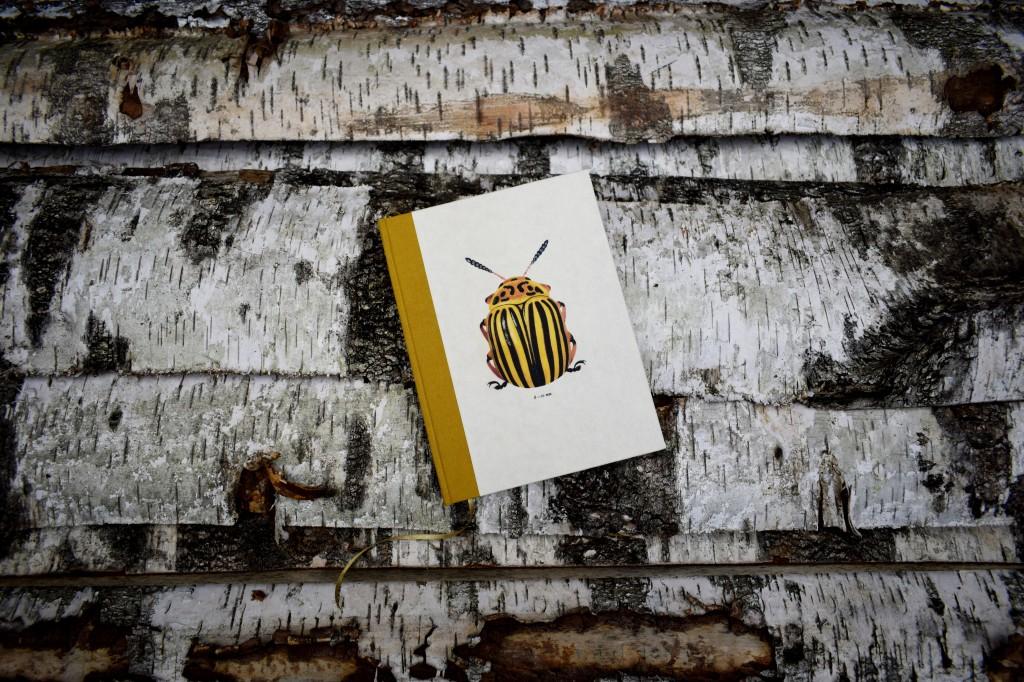 Tyymian stuudio kalendermärkmik  autor Ivar Põllu 1024x682 Kordumatud käsitöömärkmikud
